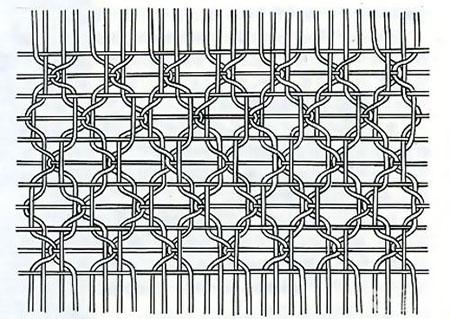 四经绞罗组织结构图